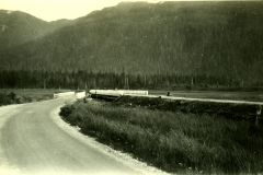 129-3856, 1931