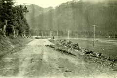 132-3788, 1931