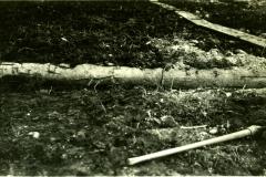 134-3858, 1931