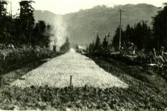 138-3860, 1931
